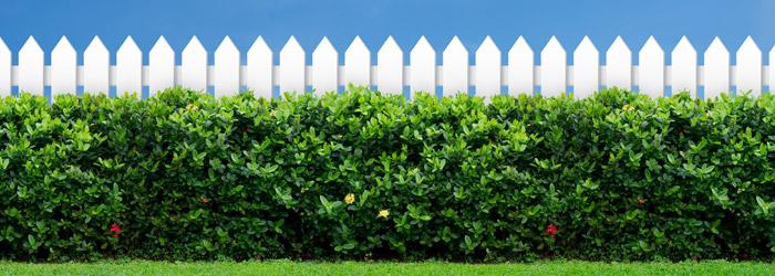 Zaun als Sichtschutz